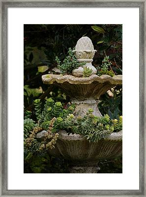 The Fountain Painterly Framed Print by Ernie Echols