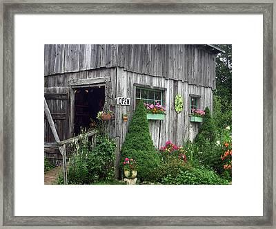 The Garden Shed Framed Print by J R Baldini M Photog Cr