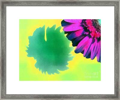The Gerbera Framed Print by Odon Czintos