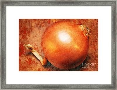 The Golden Onion Framed Print by Andee Design