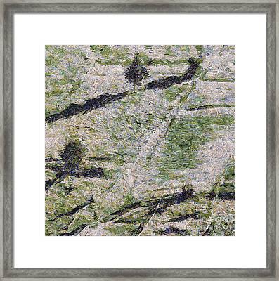 The Grazing Framed Print by Odon Czintos