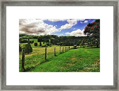 The Green Green Grass Of Home Framed Print by Kaye Menner