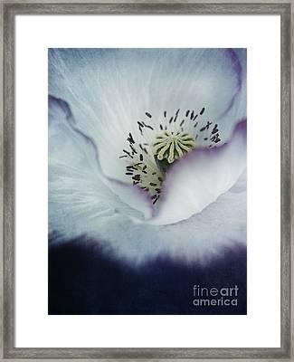 The Heart Of A Poppy Framed Print by Priska Wettstein
