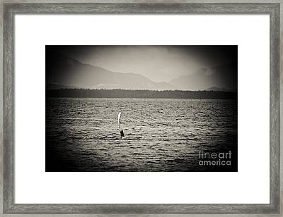 The Humpback Wave Sepia Framed Print by Darcy Michaelchuk