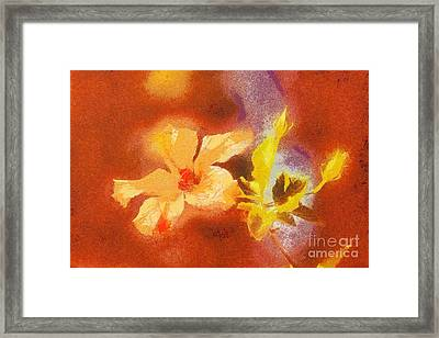 The Iris Flower Framed Print by Odon Czintos