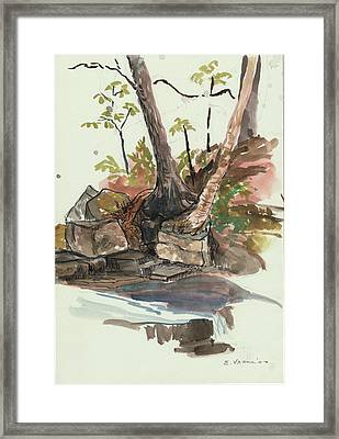 The Jessup Indian Lake Ny Framed Print by Ethel Vrana