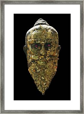 The Jewel Eyed Hermit Framed Print by Gregory Smith