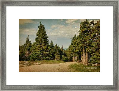 The Journery Framed Print by Beve Brown-Clark Photography