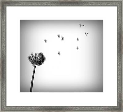 The Journey Begins Framed Print by Steven Milner