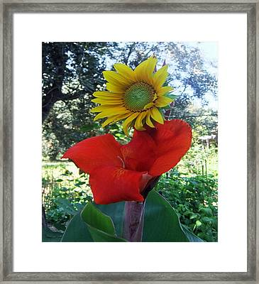 The Lady In Red Framed Print by Eric Kempson