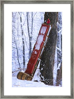 The Last Ride Framed Print by Ron Jones