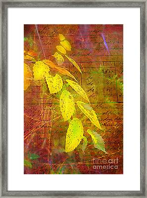 The Leaves Of Yesteryear Framed Print by Judi Bagwell