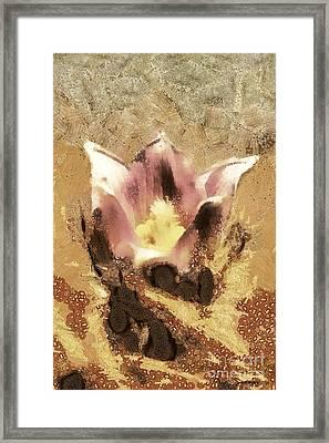 The Light Flower Framed Print by Odon Czintos