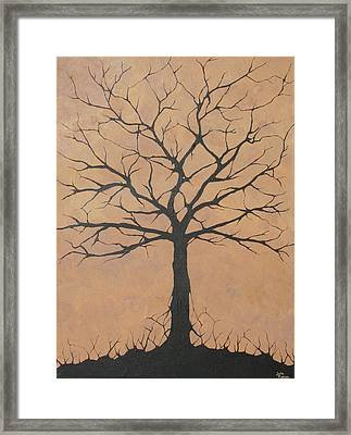 the Lindsey Tree Framed Print by Julia Raddatz