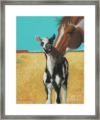The Little Mustang Framed Print by Tracy L Teeter