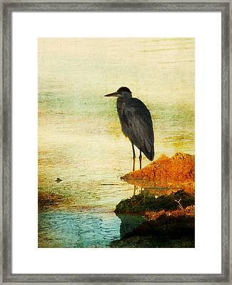 The Lonely Hunter Framed Print by Amy Tyler