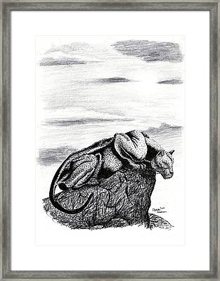 The Look Out Framed Print by Elizabeth Harshman