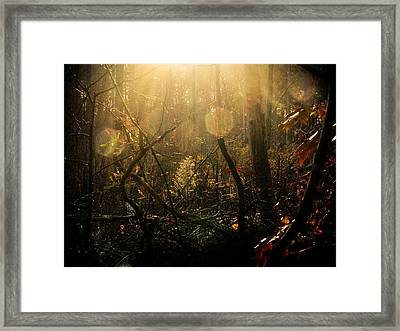 The Looking Glass Framed Print by Jessica Brawley
