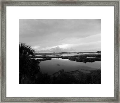 The Marshes Of St. Marks Framed Print by Judy Wanamaker