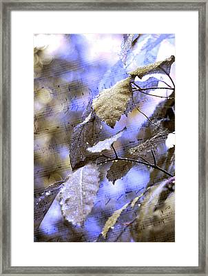 The Melody Of The Silver Rain Framed Print by Jenny Rainbow