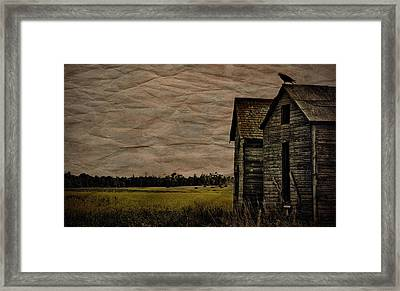 The Messenger  Framed Print by JC Photography and Art