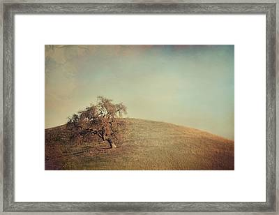 The Neverending Loneliness Framed Print by Laurie Search