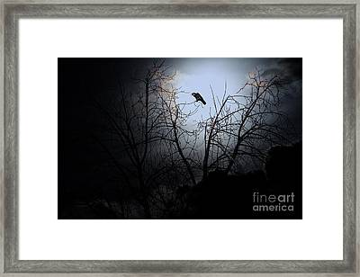 The Night The Raven Appeared In My Dream . 7d12631 Framed Print by Wingsdomain Art and Photography