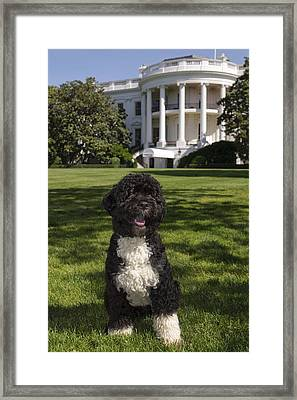 The Official Portrait Of The Obama Framed Print by Everett
