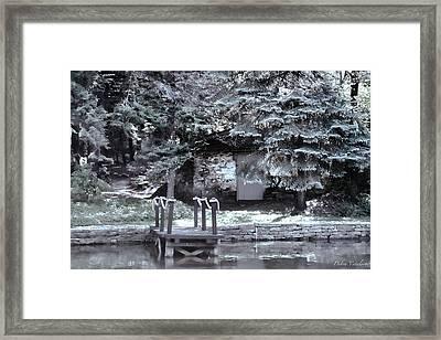 The Old Swimming Hole Framed Print by Debra     Vatalaro