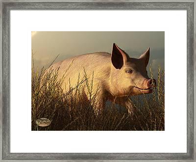 The Pink Pig Framed Print by Daniel Eskridge