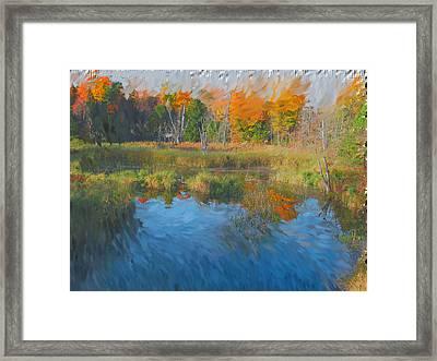 The Pond Next Door Framed Print by Mario Carini