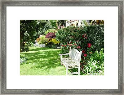The Pondering Place Framed Print by Therese Alcorn