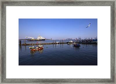 The Port Of Harwich Framed Print by Darren Burroughs