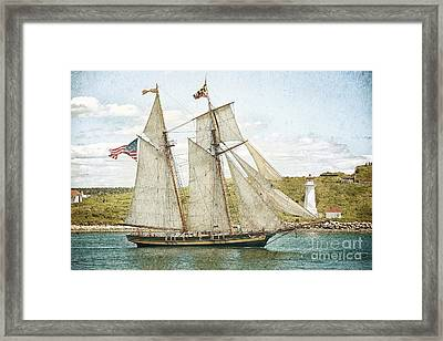 The Pride Of Baltimore In Halifax Framed Print by Verena Matthew