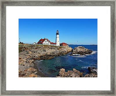 The Quintessential Maine Framed Print by Lanis Rossi