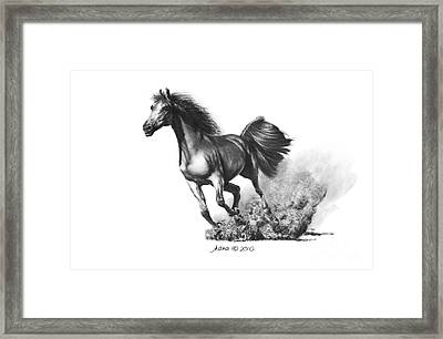 the Race is on  Framed Print by Marianne NANA Betts