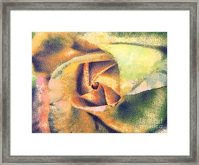 The Rose Framed Print by Odon Czintos