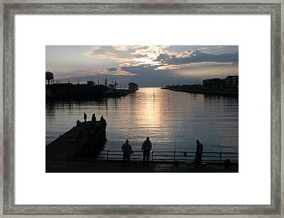 The Salmon Are Running Framed Print by Kay Novy