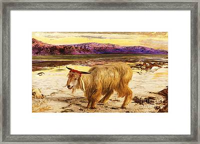 The Scapegoat Framed Print by Pg Reproductions