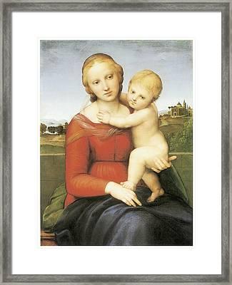 The Small Couper Madonna Framed Print by Raffaello Sanzio
