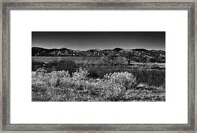 The South Platte Park Landscape II Framed Print by David Patterson
