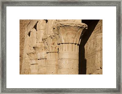 The Tops Of The Pillars Of The Temple Framed Print by Taylor S. Kennedy