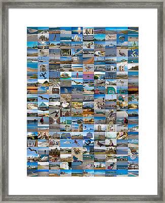 The Topsail Island 200 Framed Print by Betsy C Knapp