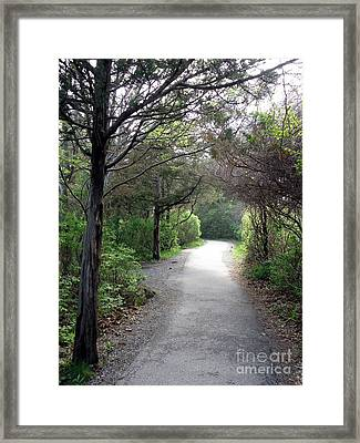 The Way Framed Print by Christy Bruna