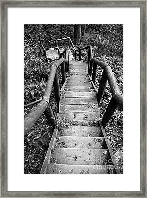 The Way Down Framed Print by Olivier Steiner