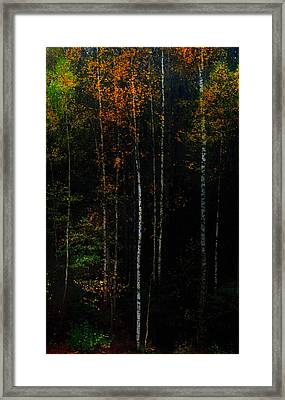 The Way To Glow From The Darkness Framed Print by Jenny Rainbow