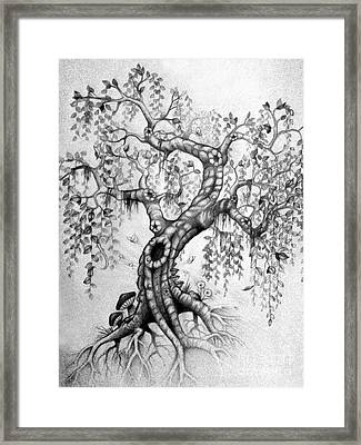 The Willow Framed Print by Melissa Senesac