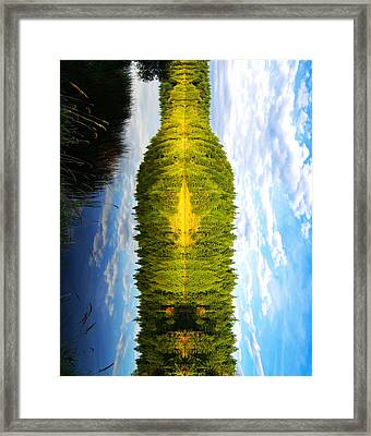 The Wine Bottle Framed Print by Cary Ligon