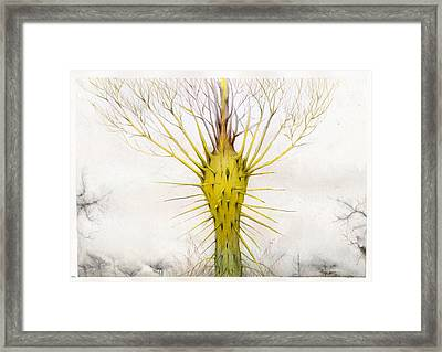 The Yellow Plant Framed Print by Bjorn Eek