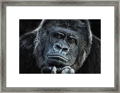 thinking about U Framed Print by Joachim G Pinkawa